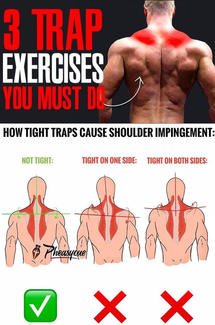 Trap Exercises Exercise Gym Training Program Get In Shape