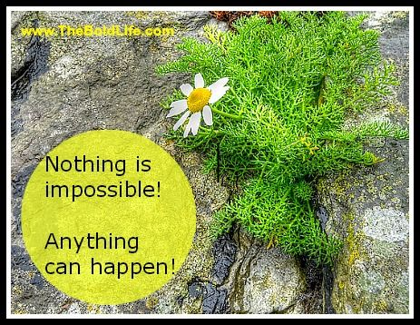 Nothing is impossible. Anything can happen!