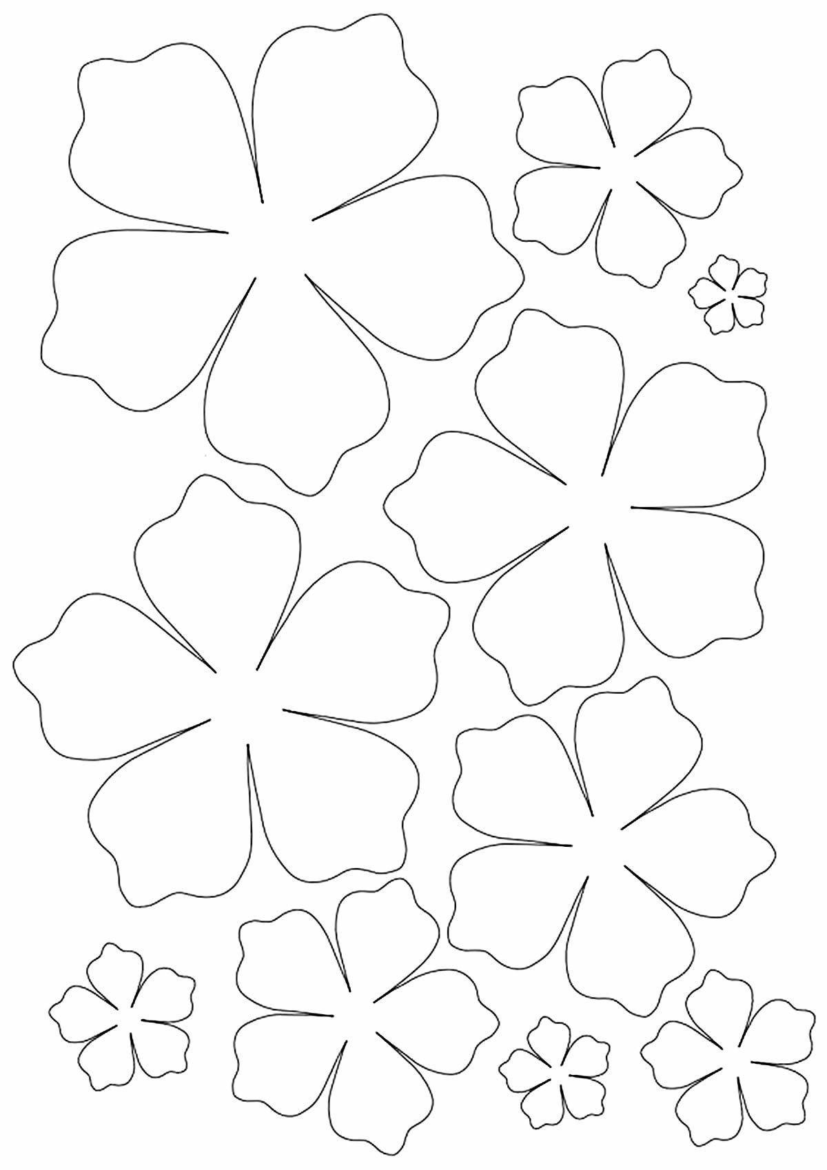 Объемные цветы из бумаги для открытки шаблон
