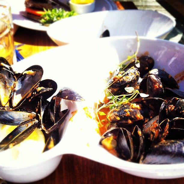 #summer #mussels #havariet