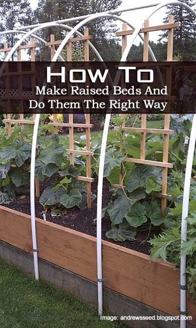Why This Raised Garden Bed Is Made The Right Way