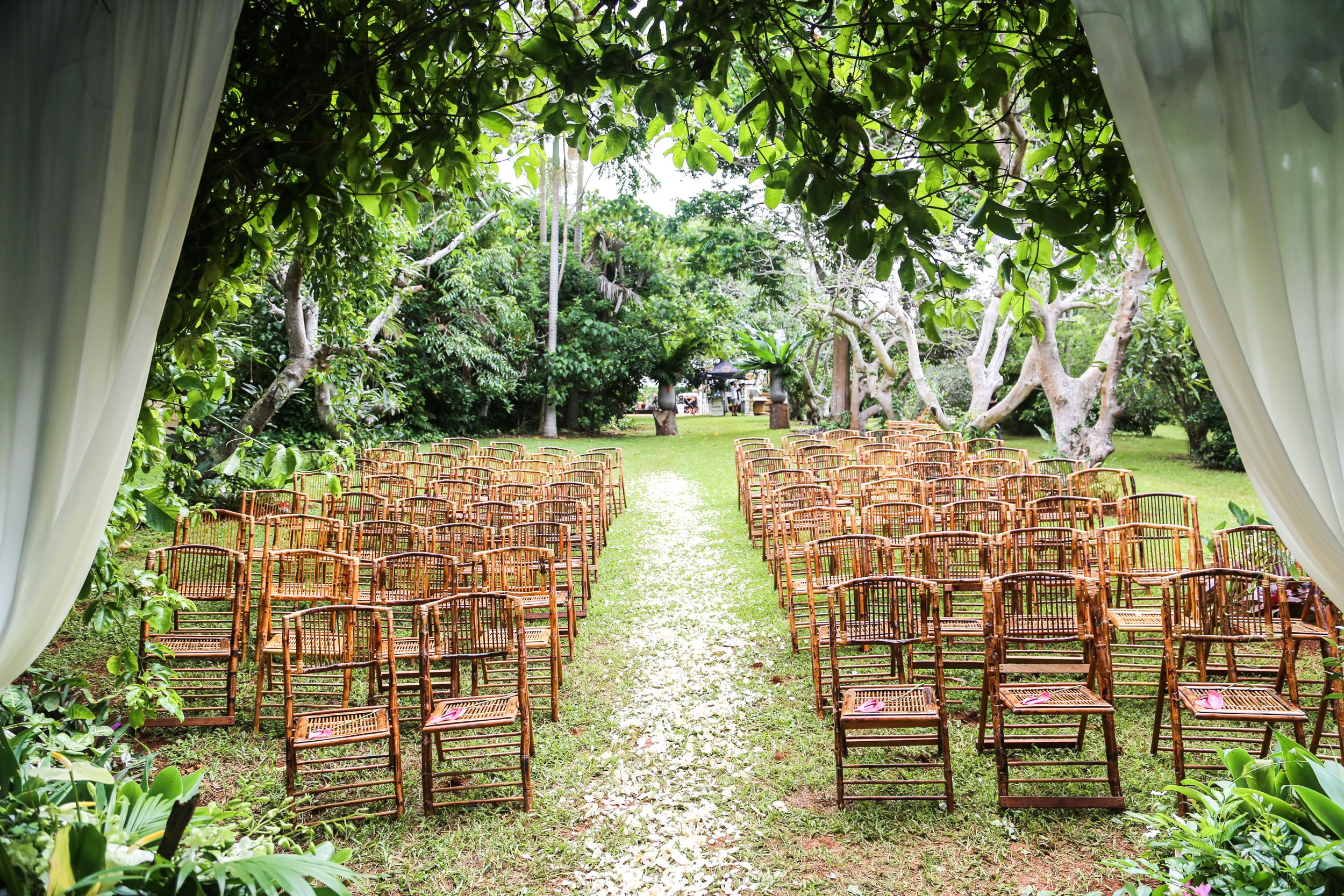 Tropical Orchard Wedding Byron Bay (With images