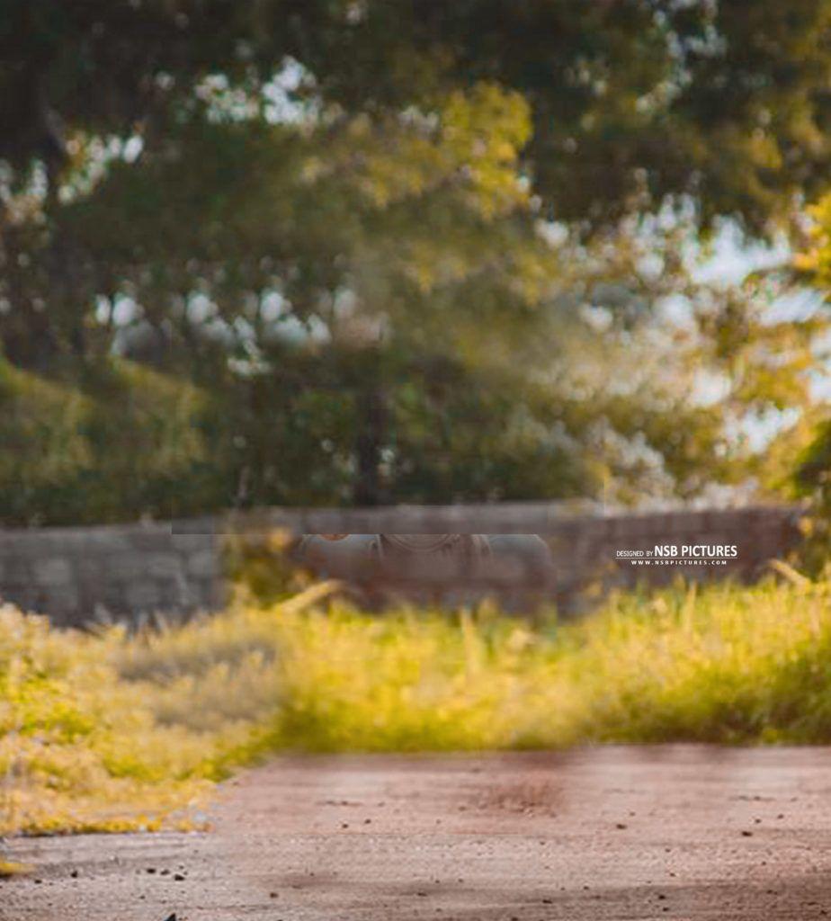 New Cb Backgrounds Download 50 Picsart Cb Editing Backgrounds 2018 Background Images Hd Hd Background Download Photoshop Digital Background Cb edit background full hd new 2019