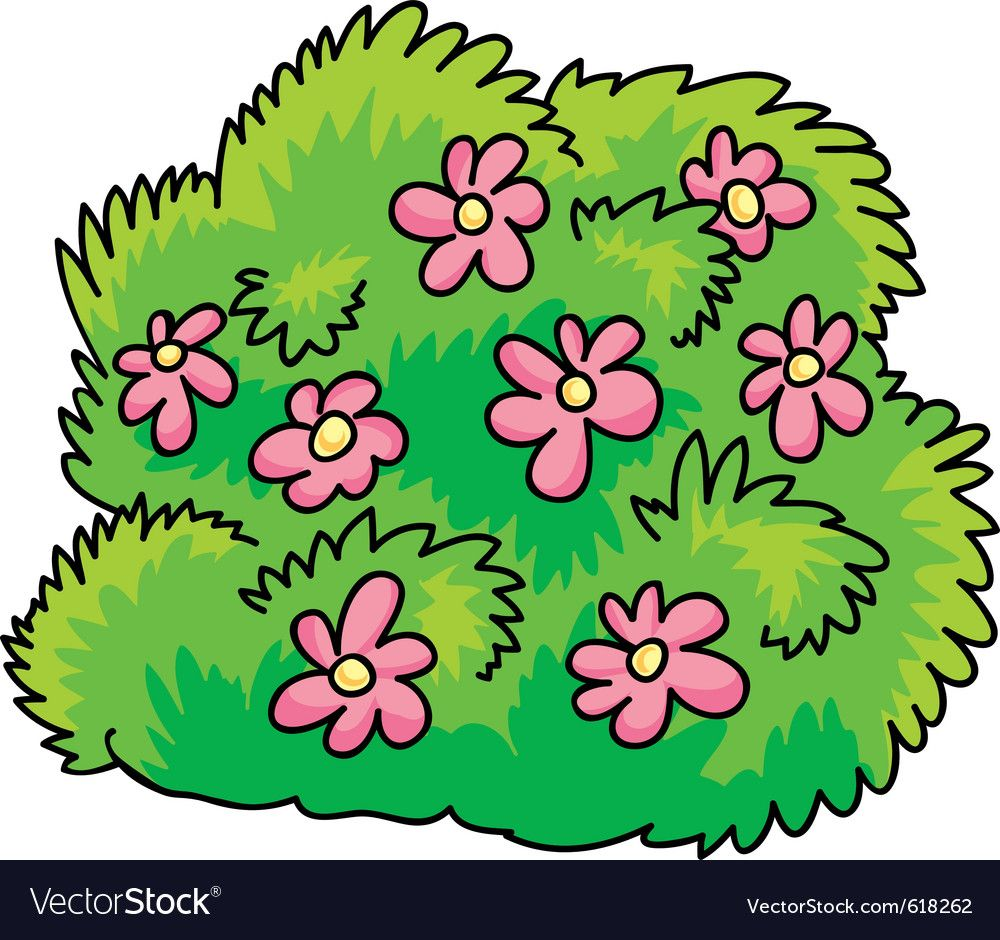 Green Bush With Pink Flowers Vector Image On With Images Pink