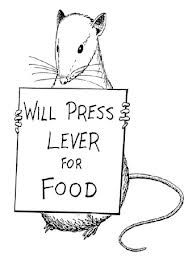 Skinner's experiment with rats (operant conditioning