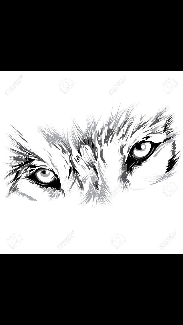 Wolf Eye Tattoo : tattoo, Tattoo,, Eyes,, Tattoos