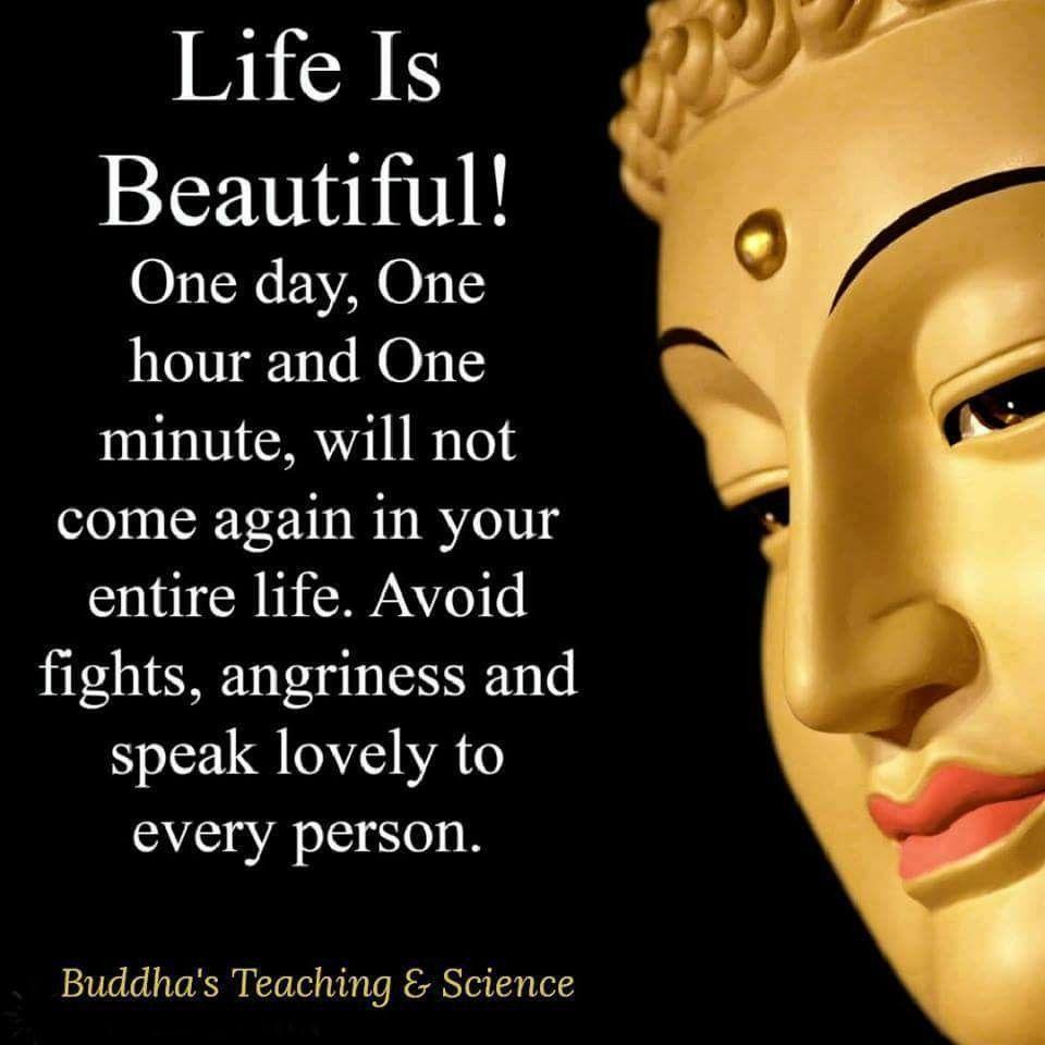 Pin de Kristine Thayer en Buddha/Buddhism Sayings   Pinterest