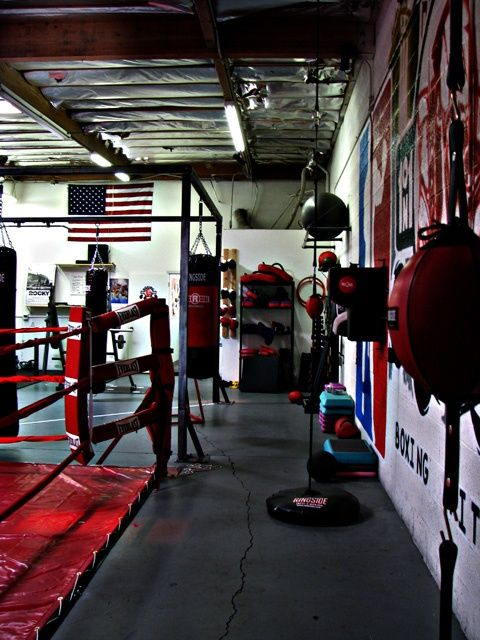 In Floor Boxing Ring Home Gym Design Home Gym Gym