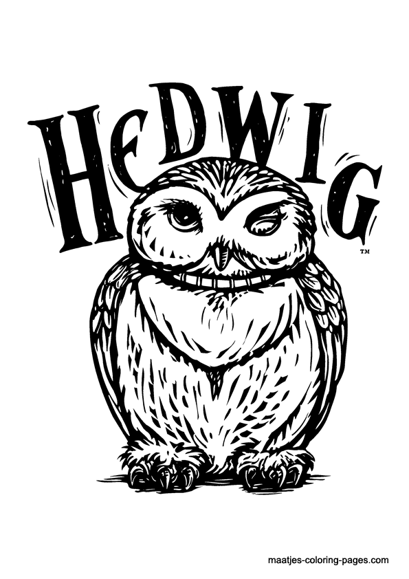 Hedwig From Maatjes Coloring Pagescom Projekte Harry Potter