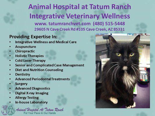 photos for animal hospital at tatum ranch yelp