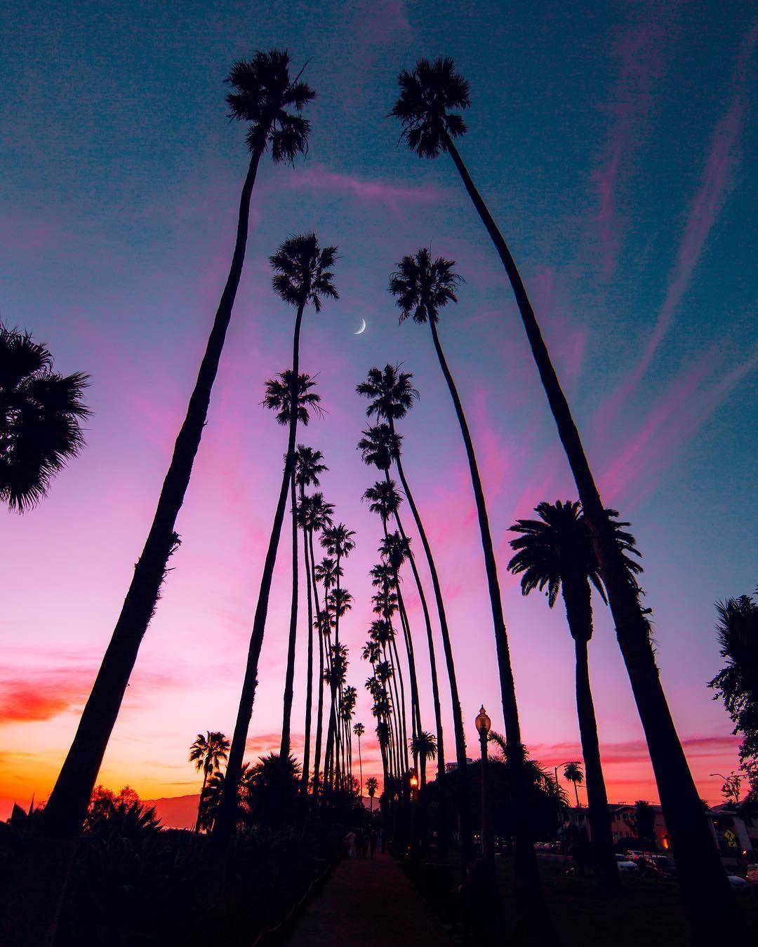 "Beautiful Nature Los Angeles: Los Angeles On Instagram: ""(013/365) 🌴♥️ ️🌙🔮"