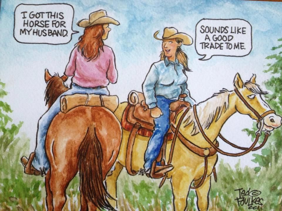 """I got this horse for my husband…"""" comic   Horse cartoon, Funny ..."""