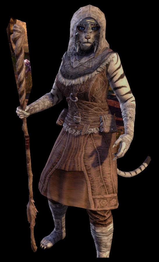 Show Your Khajiit Page 5 Elder Scrolls Online Elder Scrolls Art Skyrim Art Elder Scrolls