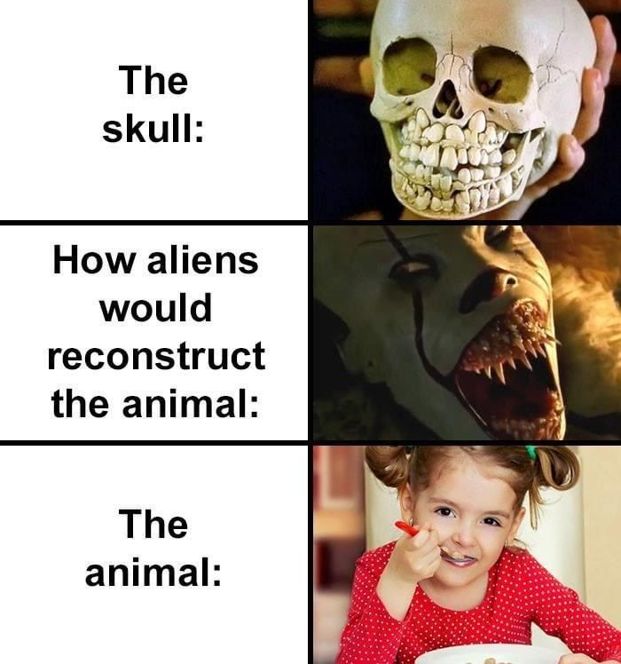28 Animal Memes That Riff On Their Misleading Skeletal Structures