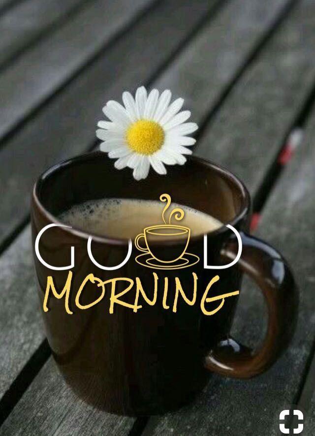 Guten Morgen ☕   - Good morning - #Good #guten #Morgen #Morning