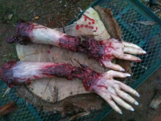 Gross bloody severed arm , hand with bone. $25.00, via Etsy. Use ...