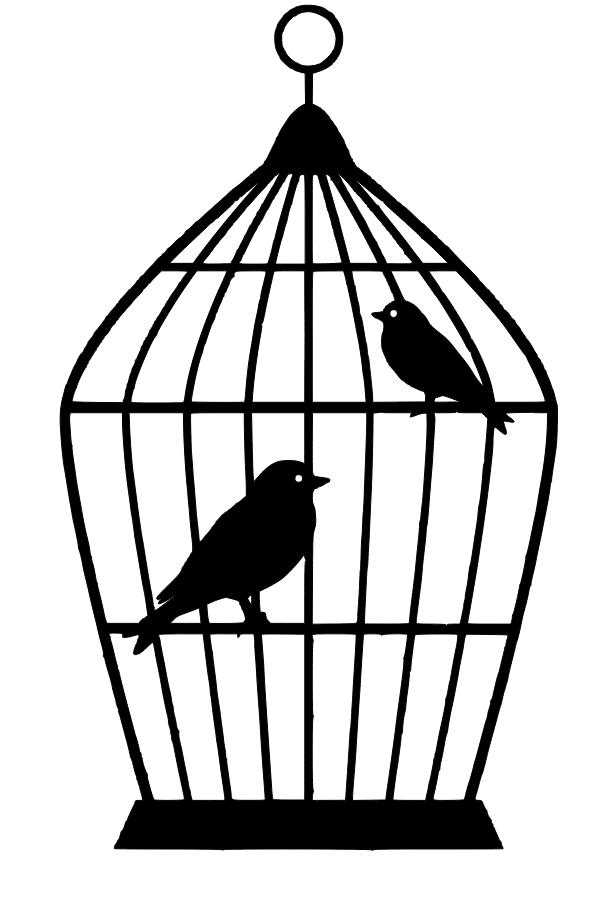 Birdcage Svg Antique Bird Cages Bird Cage Bird Cages