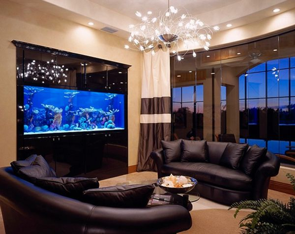 22 contemporary living room designs with fish tanks house transitional decor living room - Decorative fish tanks for living rooms ...
