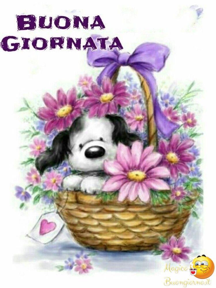Mercoled 0 auguri e saluti buongiorno e buonanotte eccgood for Buongiorno divertente sms