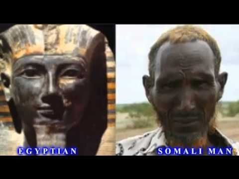 Les Anciens Egyptiens Et Nubiens Etaient Noirs Et De La Meme Race
