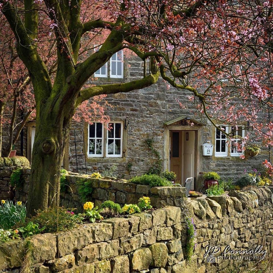 English cottage  Cottage Love  in 2019  Cottage homes