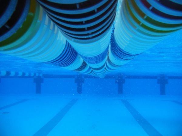 7 ways to forge mental toughness for open water swimming - Swimming pool maintenance training ...