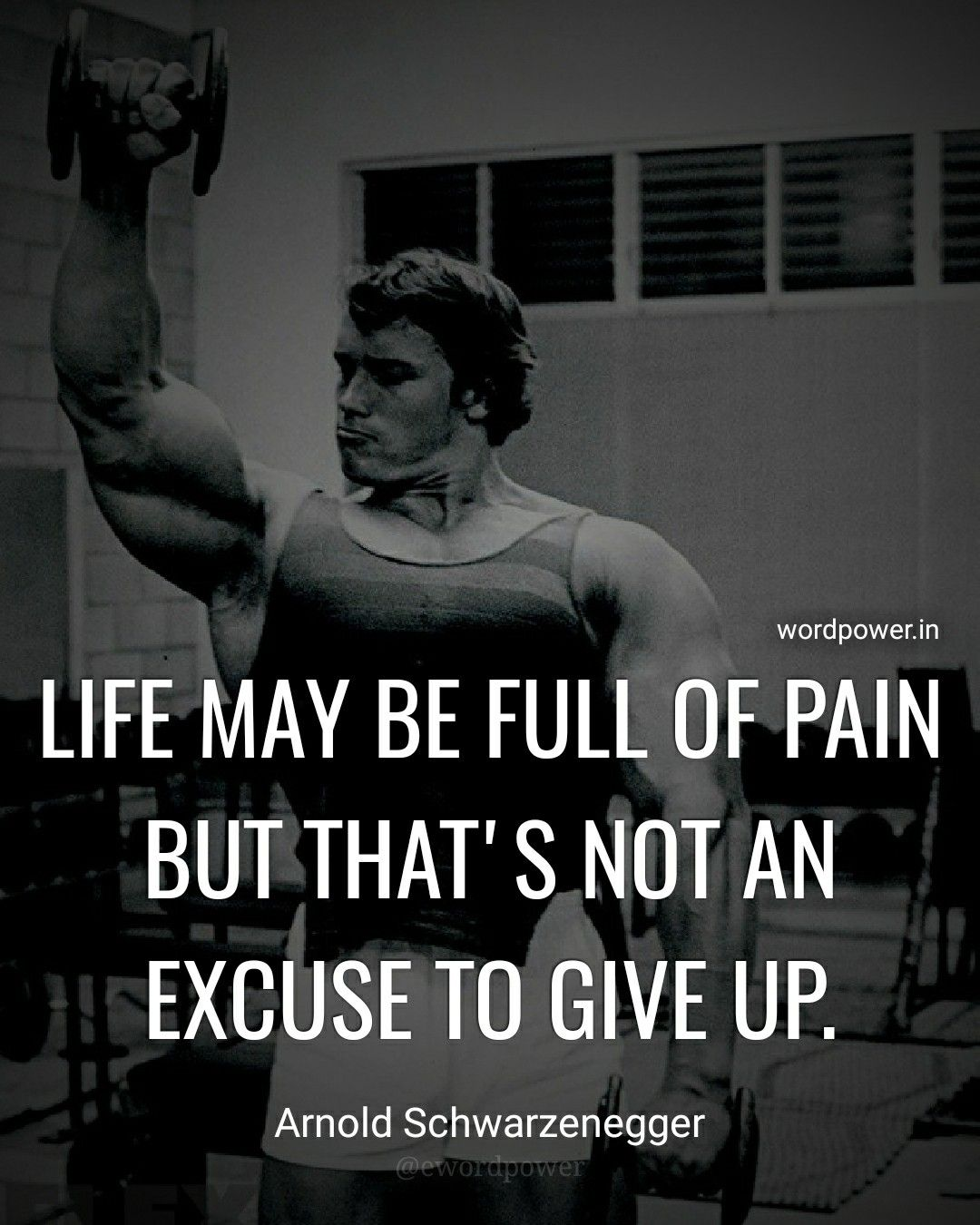 Arnold Schwarzenegger Quotes Not Giving 50 Quotes
