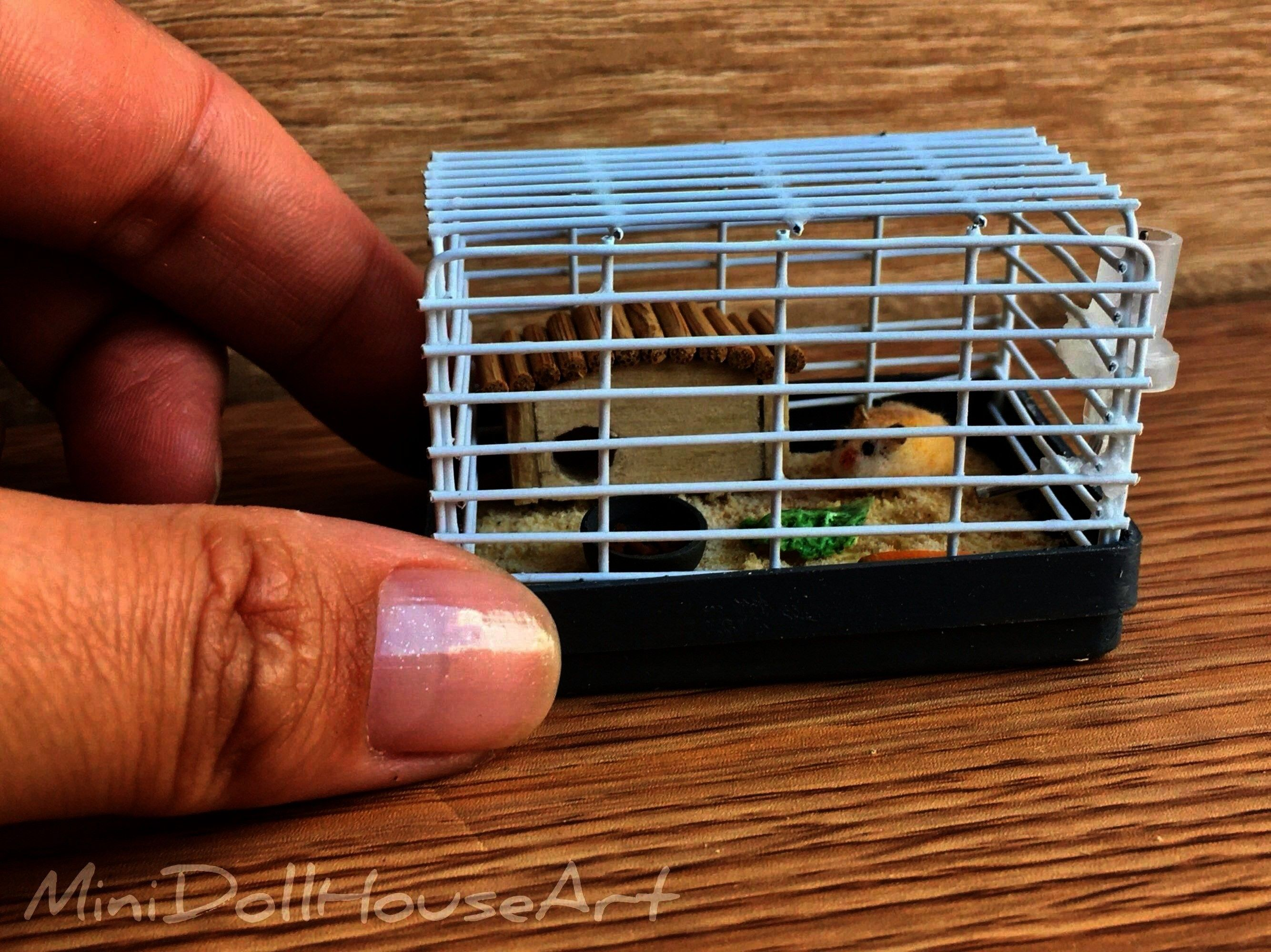for dolls doll house Handmade  Cage with hamster Miniature for dolls doll house Handmade   Finishing off an entire bowl of ramen has never been easier Or less filling Tat...