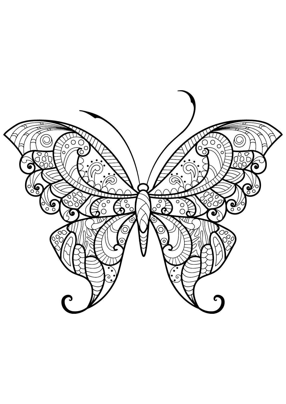 Butterfly Beautiful Patterns 12 Butterfly With Beautiful Patterns 12 From The Gallery Butterfly Coloring Page Insect Coloring Pages Mandala Coloring Pages [ 1684 x 1191 Pixel ]