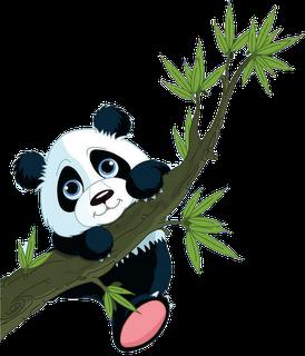 Cute Cartoon Panda Cute Cartoon