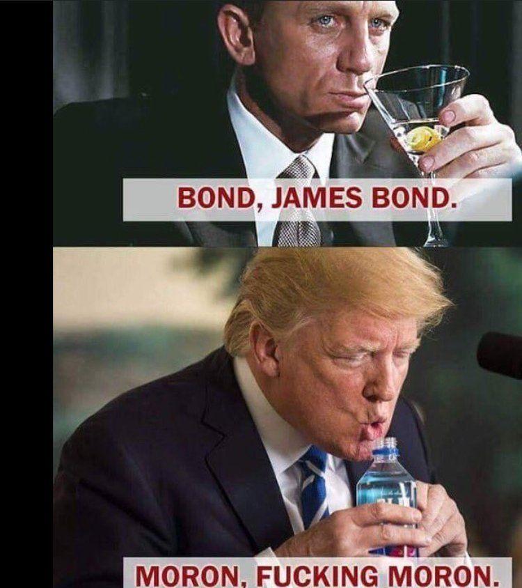 Low IQ Career Criminal Trump | Low iq, Humor, Funny