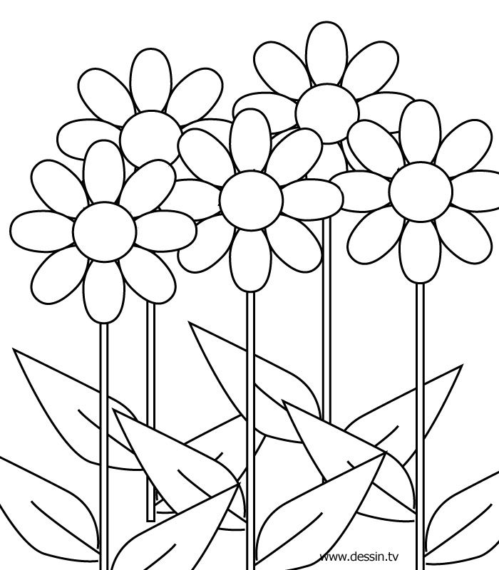 fall flower coloring pages - photo#25