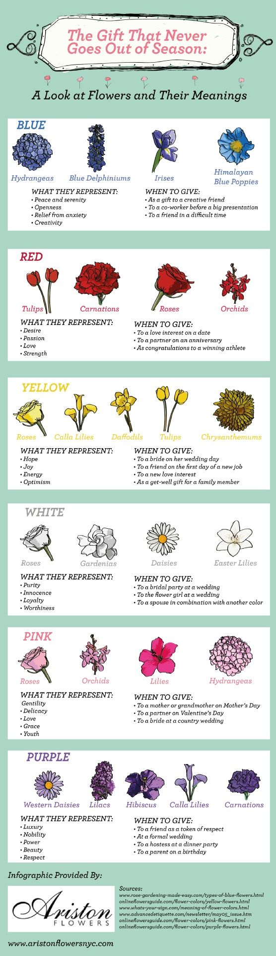 Flowers & their meanings. Flower meanings, Amazing