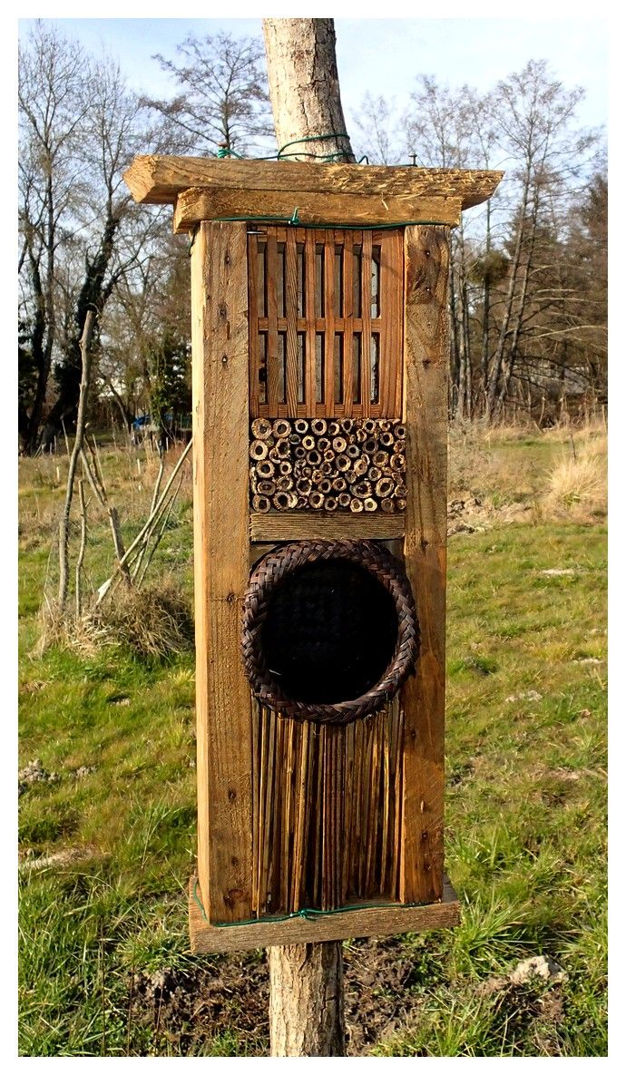 nichoir insectes insect hotels pinterest insect hotel mason bees and bee house. Black Bedroom Furniture Sets. Home Design Ideas
