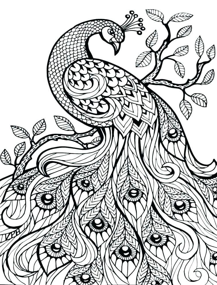 Coloring Pages for Adults #mandala