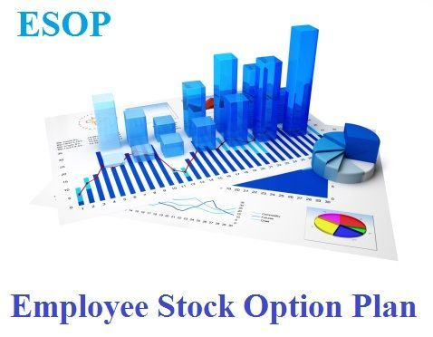 Stock options investment service
