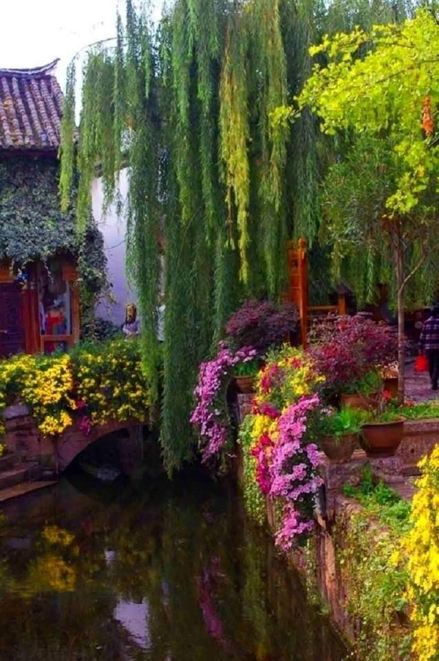 Weeping Willow Bridge, Yunnan, China Tag someone you\u0027d love take - chinesischer garten brucke