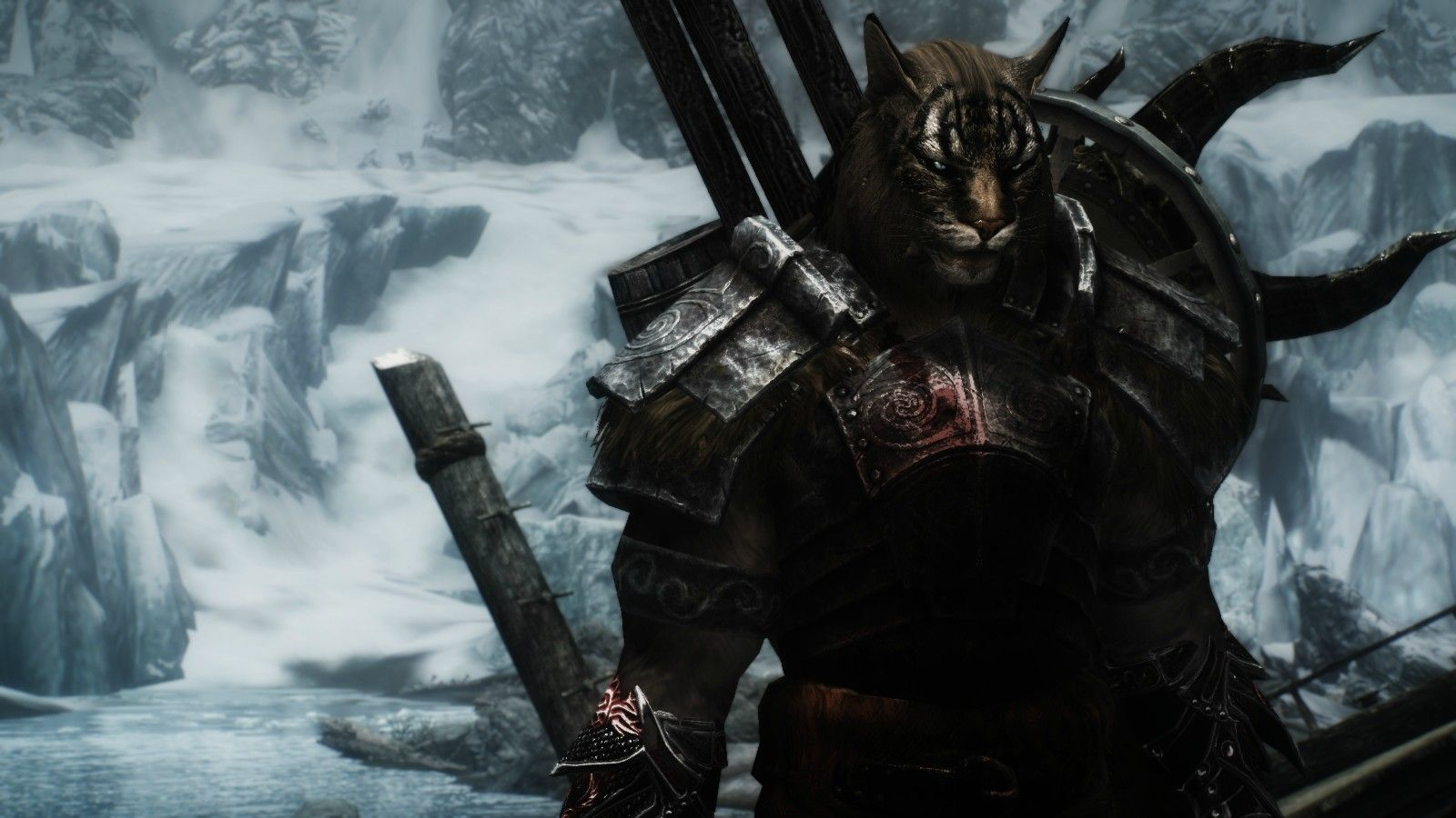 khajiit skyrim the elder - photo #27