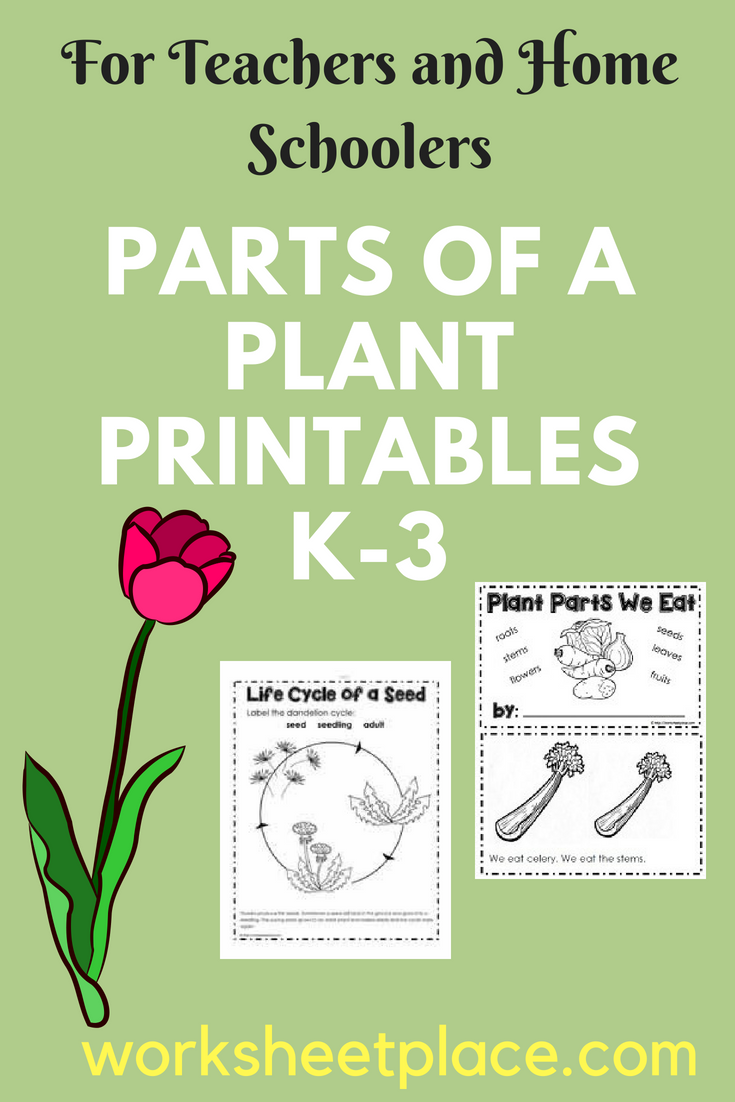 Great Printables For The K 3 Classroom To Teach About Germination Plant Parts Parts Of The Plant We Free Science Worksheets Teaching Plants Plants Worksheets [ 1102 x 735 Pixel ]