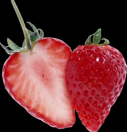ur cute im fruit : Photo
