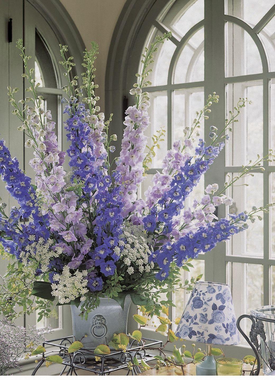 Kalendarz Kwiatow Sezonowych Delphinium Wedding Flowers Larkspur