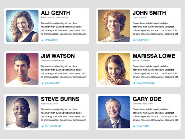 Adobe Muse Classic Team Page Template Musefree Com Meet The Team Team Page Company Culture Wall