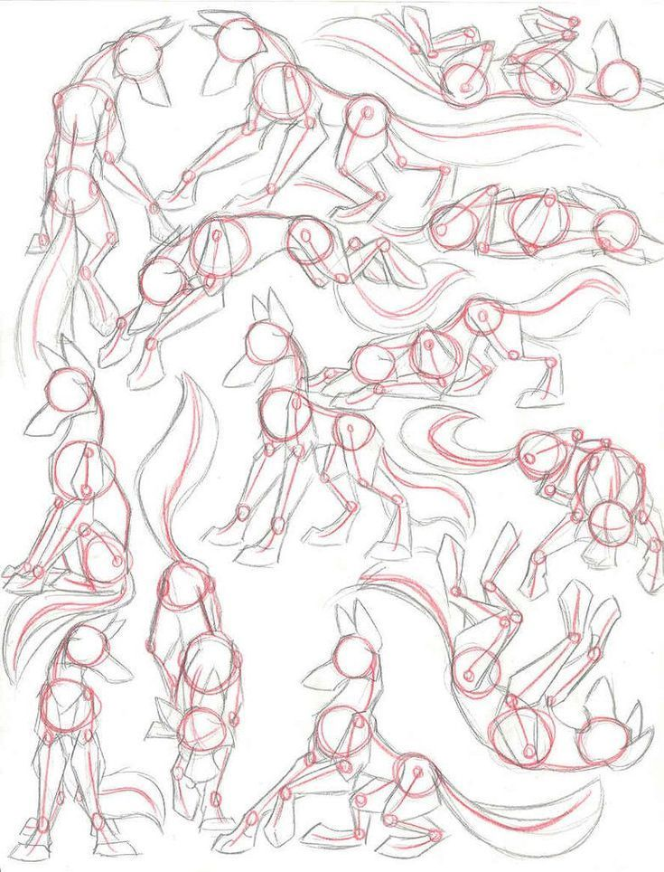Photo of Dibujar animales en poses de manga t bocetos de arte art #manga #poses #sketches #tiere …