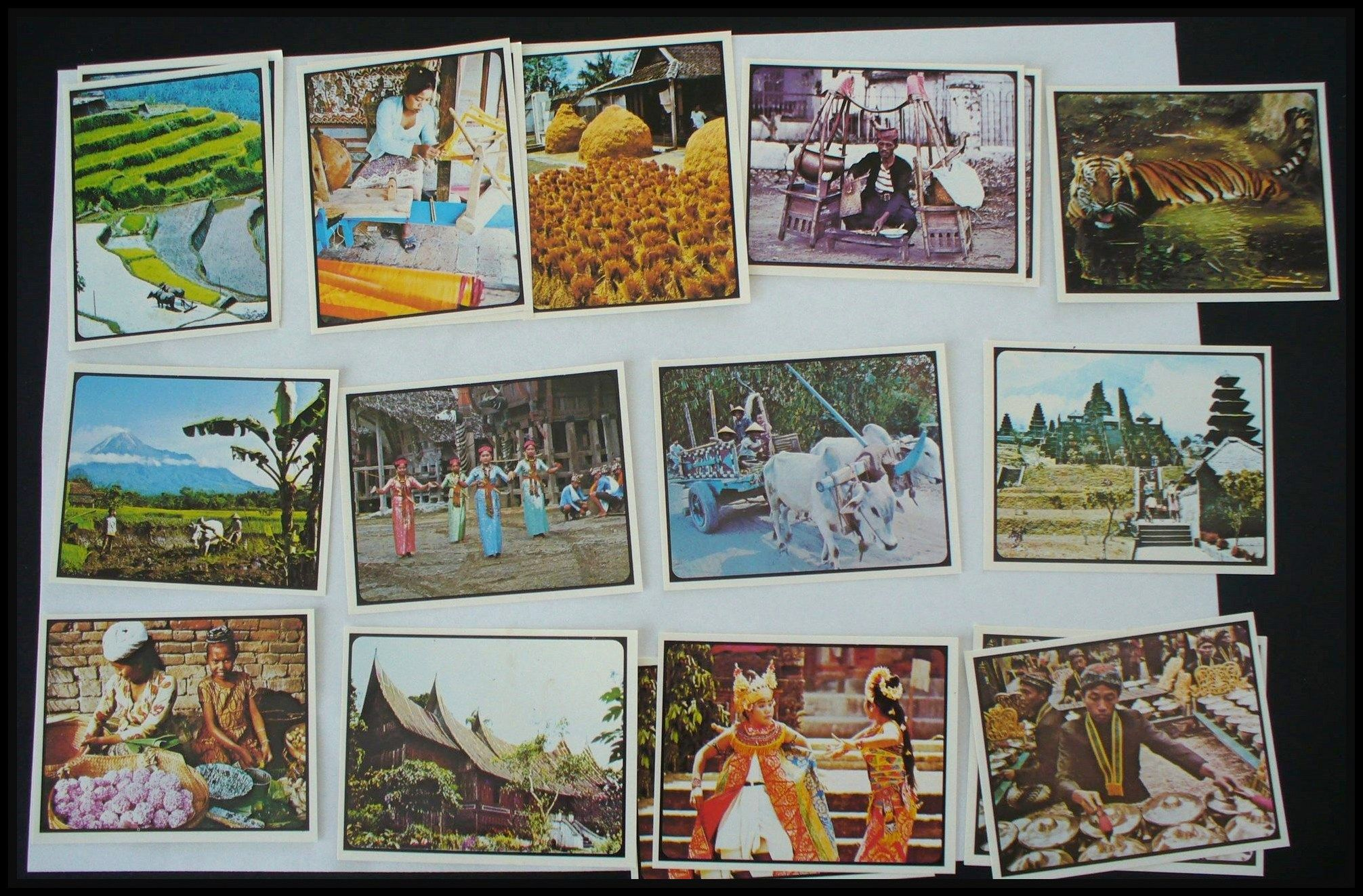 "Weetbix Cards""Discover Indonesia"". 1977 New Zealand"