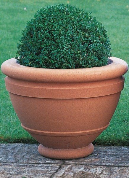 Haddonstone Compton Bowl Planter is part of Contemporary garden Planters - The cast stone Compton Bowl from Haddonstone is an attractive garden planter  Suitable for either traditional or contemporary gardens, this simple and attractive Compton Bowl is adapted from the Poppy Bowl and is based upon a terracotta pot designed by Mary Watts (18491938) for the Compton Potters' Arts Guild  The Compton Bowl is perfect for lawns and terraces  The elegant Compton Bowl by Haddonstone is ideal for both traditional and contemporary garden schemes  This simple pot design is available in Portland, Bath and Terracotta colours