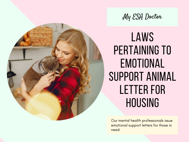 Get An Emotional Support Animal Letter From My Esa Doctor