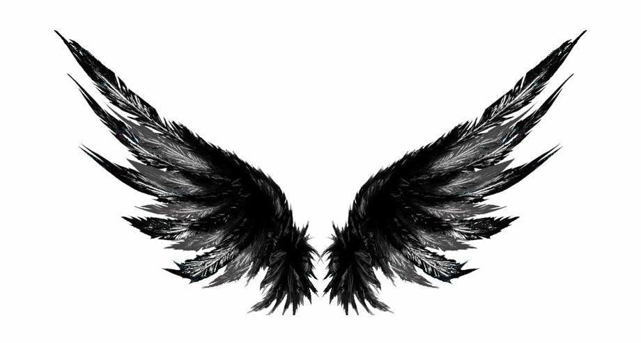 Wings Png Dark Wings Tattoo Designs 403532 Vippng Wings Tattoo Wing Tattoo Designs Wing Neck Tattoo