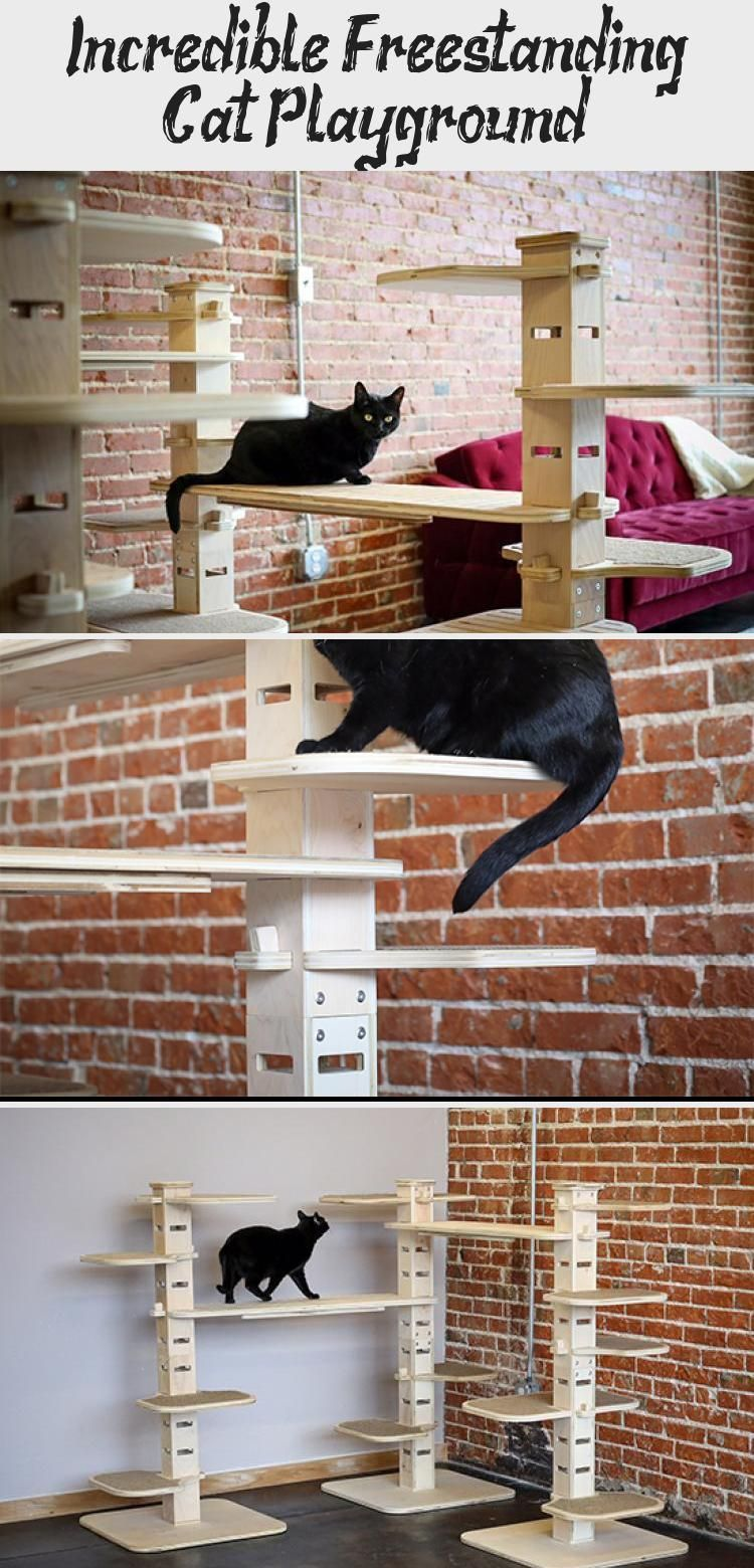 Incredible Freestanding Cat Playground! - CATS   - Cat Playgrounds #Cat #Cats #Freestanding #Incredible #Playground #Playgrounds #CatPlayground #Cat #Playground