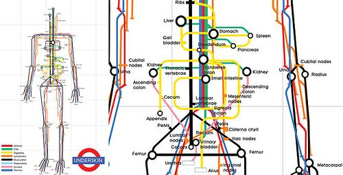 Body map using the London Tubes map design Very Cool  For the