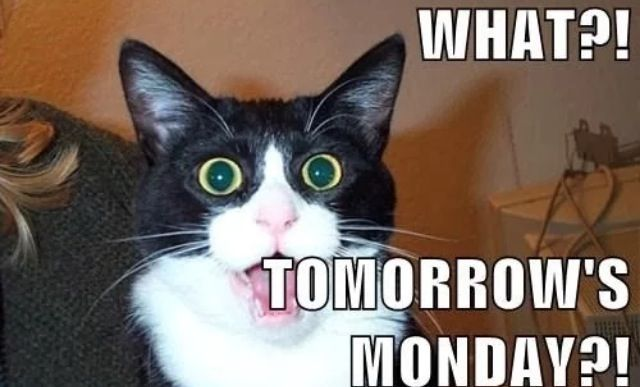 What Tomorrowu0027s Monday Quotes Quote Funny Quotes Monday Days Of The Week Sunday  Monday Quotes Sunday Quotes Tomorrows Monday Sunday Humor